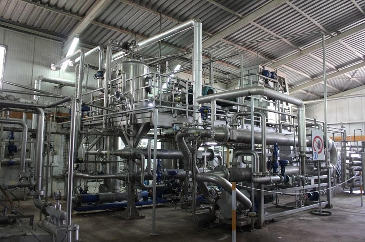 Complete Fruit puree and Tomato paste processing plant